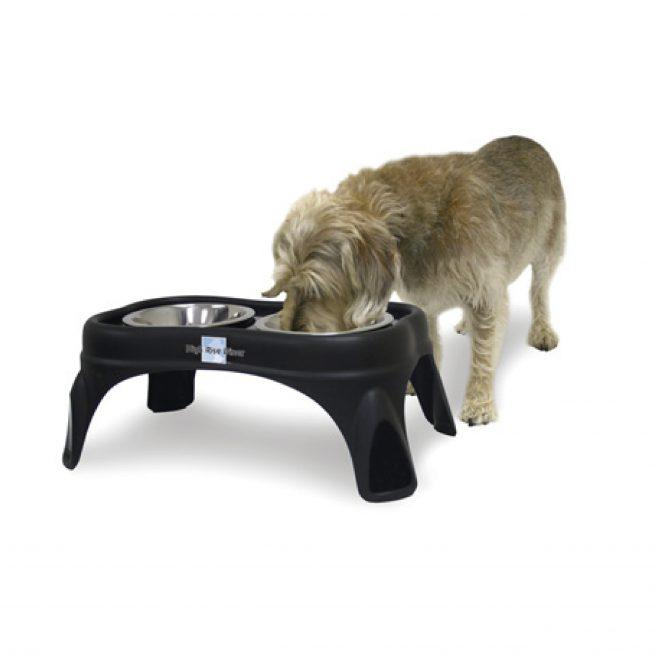 Comedero doble elevado hueso 8 icono pet ltda for Comederos para perros