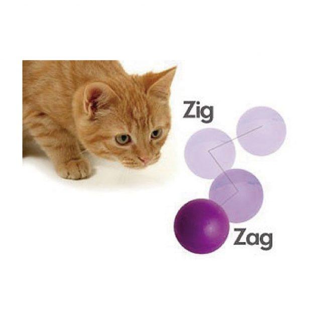 Pelota gato go cat zig zag icono pet ltda distribuidor for Gimnasio zig zag