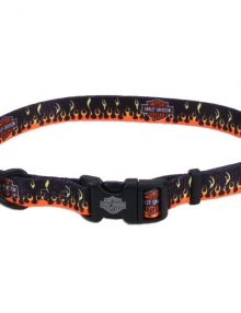 Collar perro nylon harley davidson ICONOPET distribuidor accesorios para mascotas