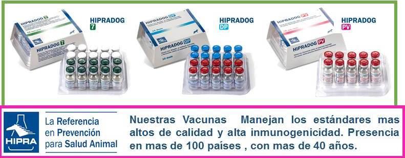hipra distemper parvo virosis pentavalente vacuna perro alta calidad