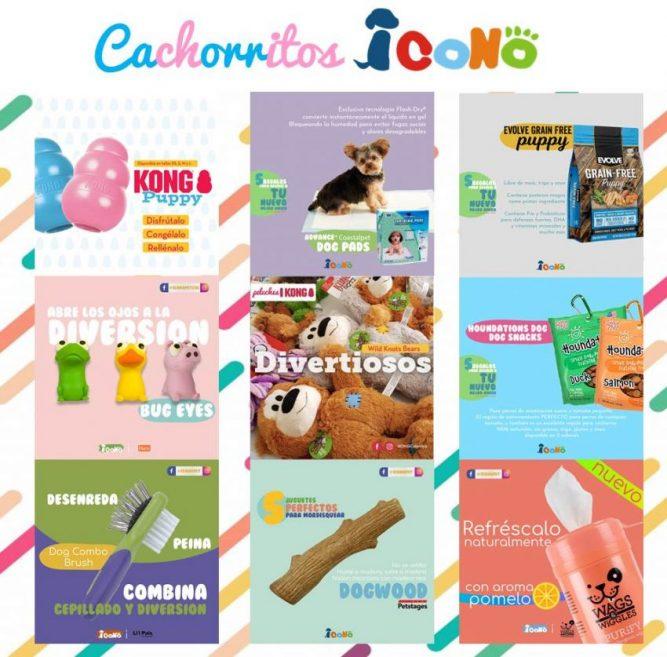 perro cachorro juguetes nutricion snacks mordederos denticion recomendados